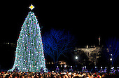 The National Christmas Tree stands on the Ellipse near the White House after being lit by United States President Barack Obama in Washington, DC, on Thursday, December 9, 2010. The first Christmas tree lighting ceremony took place back in 1923, with U.S. President Calvin Coolidge presiding. .Credit: Andrew Harrer / Pool via CNP