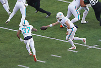 quarterback Ryan Fitzpatrick (14) of the Miami Dolphins gibt den Ball an running back Myles Gaskin (37) of the Miami Dolphins - 08.12.2019: New York Jets vs. Miami Dolphins, MetLife Stadium New York