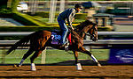 October 30, 2019: Breeders' Cup Juvenile Fillies entrant Two Sixty, trained by Mark E. Casse, exercises in preparation for the Breeders' Cup World Championships at Santa Anita Park in Arcadia, California on October 30, 2019. Scott Serio/Eclipse Sportswire/Breeders' Cup/CSM