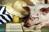 Interlitho, Alberto, ANIMALS, pigs, photos, pig, hat, book, juice(KL1998/1,#A#) Schweine, cerdos