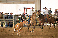 Ranch Rodeo - 4.5.2014 - Stray Gathering