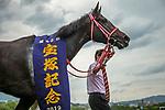 TAKARAZUKA,JAPAN-JUN 23: Lys Gracieux,ridden by Damian Lane, after winning the Takarazuka Kinen at Hanshin Racecourse on June 23,2019 in Takarazuka,Hyogo,Japan. Kaz Ishida/Eclipse Sportswire/CSM