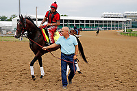 LOUISVILLE, KENTUCKY - APRIL 30: Classic Empire, owned by John Oxley, is led to the track by trainer Mark E. Casse, before exercising in preparation for the Kentucky Derby at Churchill Downs on April 30, 2017 in Louisville, Kentucky. (Photo by Jon Durr/Eclipse Sportswire/Getty Images)