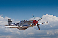 P51-D Mustang<br /> Serial #: 45-11582<br /> Construction #:<br />   124-48335<br /> Civilian Registration:<br />   N5441V<br /> Model: P-51D<br /> Name: Spam Can<br /> Status: Airworthy<br /> Last Info: 2002<br />    History: <br /> Delivered to USAAF as 45-11582, 19??.<br /> - Disposed at auction, McClellan AFB, CA, Nov. 1957.<br /> - Marked as 0-511582/W VA ANG.<br /> Edward T. Maloney/The Air Museum/Planes Of Fame, Claremont (later Ontario &amp; Chino), CA , Nov. 6, 1957-2002.<br /> - Registered as N5441V.<br /> - Flew as 511582/Spam Can (later 413334/G4-U/Spam Can and 414888/B6-Y/Glamorous Glen III.)<br /> - Later flown as race #8/Spirit Of Phoenix.<br /> - Currently flown as Spam Can.<br /> <br /> The P-51 Mustang was used primarily as an escort fighter for B-17 Bombers in WWII.  There were over 15,000 built from 1940-45 and of those there are less than 300 left today, with only half of them being air worthy.