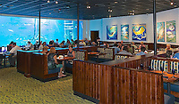 RD- Guy Harvey RumFish Grille, St. Pete Beach FL 7 14