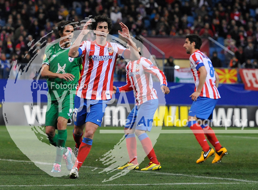14/02/2013. Madrid. Spain. Vicente Calderon Stadium. UEL. Uefa Europa League. Atletico de Madrid 0 vs 2 Rubin Kazan. Photo: Eduardo Dieguez/ DyD Fotografos