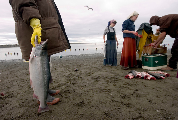 Valentina Baklanov waits with a sockeye salmon while Maria and Kate Prokosheva and Alexy Prokoshev clean other fish on the bank of the Kenai River in Kenai, Alaska. The Prokosheva family drove to Kenai from Delta Junction in the state's Interior -- a 10-hour drive - to fish for salmon.