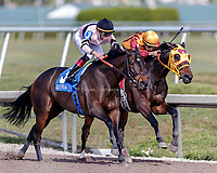 HALLANDALE BEACH, FL - December 16: Lewis Bay #3, wins The $100,000 Rampart Stakes (G3) for trainer Chad C. Brown with jockey Irad Ortiz, Jr. in the irons at Gulfstream Park on December 16, 2017 in Hallandale Beach, FL. (Photo by Bob Aaron/Eclipse Sportswire/Getty Images)