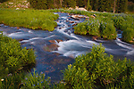 A mountain stream in the Absaroka Beartooth wilderness below Hidden Lake