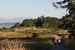 Seattle, Discovery Park, Puget Sound, Olympic Mountains, Washington State, Pacific Northwest, USA, in city, summer, wilderness park, meadow