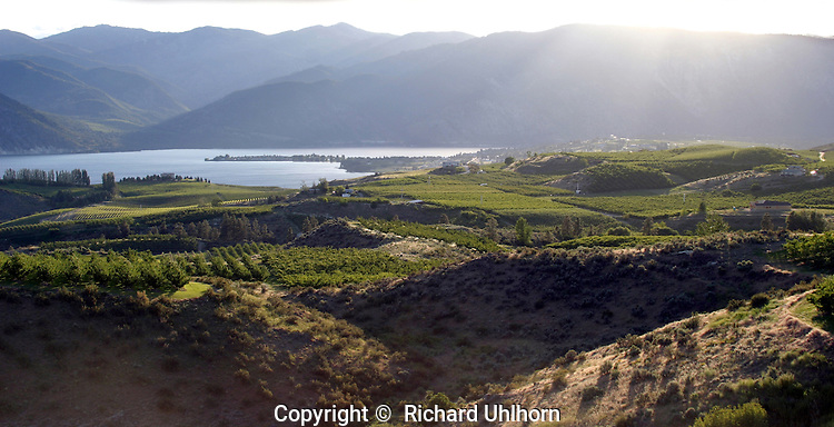 This photograph was taken in late afternoon on a summer day overlooking orchards, vineyards and Lake Chelan. Over the years since it was taken it has been successfully used for marketing the valley, advertising and marketing purposes.