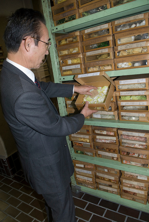 Maiduru president, Etsuji Isozaki, opens a box of plastic vegetables at Maiduru Corporation, Tokyo, Japan, 22nd December 2008. Maiduru corporation makes highly realistic plastic food for display in restaurant and cafe windows. .