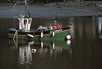Europe/France/Bretagne/29/Finistère/Riec-sur-Belon: Bateau au port