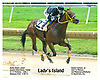 Lady's Island winning at Delaware Park on 7/15/17