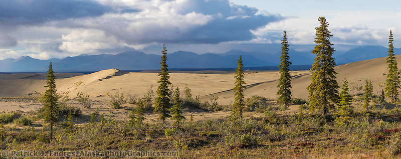 The sand dunes in the Kobuk Valley National Park, Arctic, Alaska with the Baird mountains in the distance.
