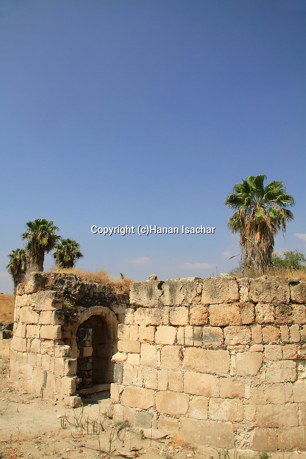 Israel, Upper Galilee, Hurvat Minim (Khirbet al-Minya) by the Sea of Galilee, ruins of an 8th century palace
