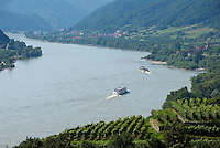 Austria, Lower Austria, Danube near Spitz: wine growing region at UNESCO World Heritage Wachau