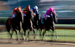 November 3, 2018 : Scenes from Breeders Cup World Championships Saturday at Churchill Downs on November 3, 2018 in Louisville, Kentucky. Jamey Price/Eclipse Sportswire/CSM