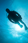 Grand Bahama Island, The Bahamas; a scuba diver is silhouette against the sunburst overhead