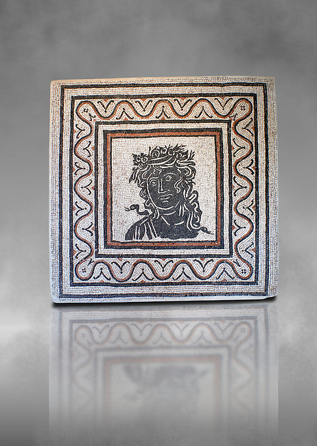 Roman  geometric floor mosaic  with a bust at its centre. From the Forte Prenestino area of Rome. 3rd century AD. National Roman Museum, Rome, Italy
