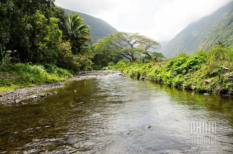 Beautiful Waipi'o Valley Stream in the back of Waipi'o Valley, Hamakua District, Island of Hawai'i.