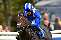 Winner of The Excalibur Communications Novice Stakes Jash ridden by Jim Crowley and trained by Simon Crisford  during Twilight Racing at Salisbury Racecourse on 14th September 2018