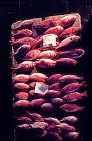 Suisan Fish Auction, Hilo, Hawaii