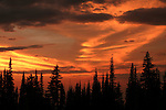 The sky glows orange and gold from Miner's Ridge at sunset. North Cascades, Washington.