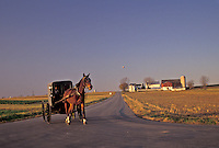 AJ3258, horse and buggy, amish, Amish country, Lancaster County, Pennsylvania, Amish horse and buggy trot along a country road through scenic Pennsylvania Dutch Country in the state of Pennsylvania.