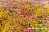 63876-02605 Aerial view of fall color trees Stephen A. Forbes State Park Marion Co. IL
