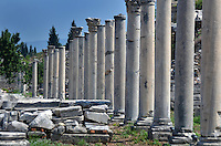 Michael McCollum.6/18/11.A row of ancient columns in Ephesus , turkey