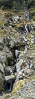 One of many waterfalls in Franz Josef Glacier valley, Westland Tai Poutini National Park, South Westland, West Coast, UNESCO World Heritage Area, New Zealand, NZ