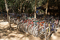 Bicycles for rent  at the Mayan ruins of Coba, Quintana Roo, Mexico.