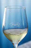 Wine glasses in the tasting room. Inscribed embossed on the glass the name of the winery Hercegovina Vino. Vinarija Citluk winery in Citluk near Mostar, part of Hercegovina Vino, Mostar. Federation Bosne i Hercegovine. Bosnia Herzegovina, Europe.