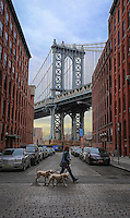 DUMBO and the Dogs - Brooklyn, New York<br /> (Down Under the Manhattan Bridge Overpass)
