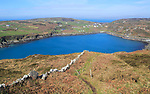 South Harbour, Cape Clear Island, County Cork, Ireland, Irish Republic