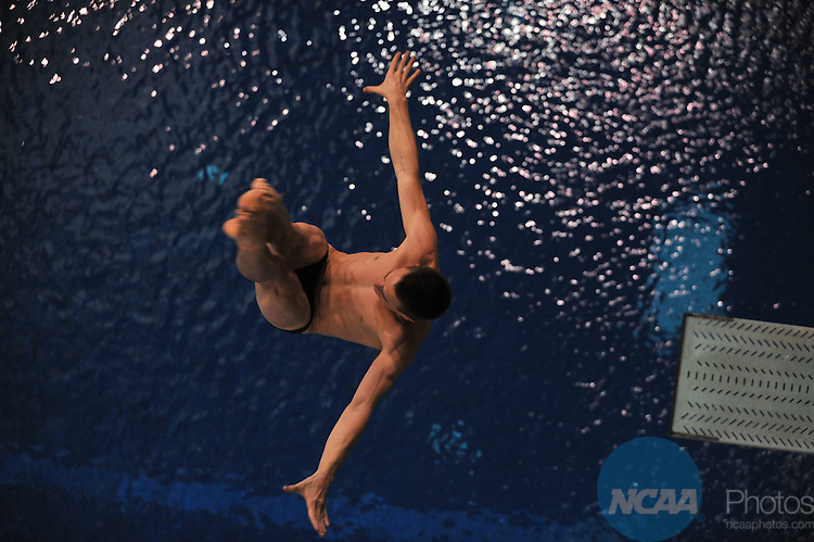 15 MAR 2008:  Men's 3 meter diving competition during the Division II Swimming and Diving Competition held at the Mizzou Aquatic Center in Columbia, MO..John Tully/NCAA Photos