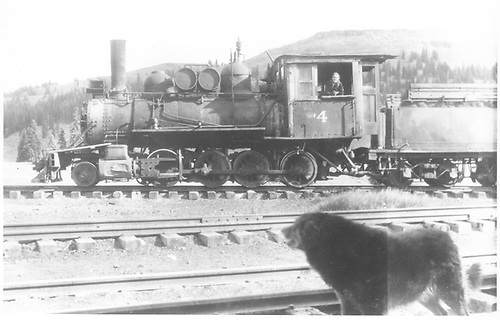 Hallack &amp; Howard Lumber Co. logging locomotive #4 on east leg of D&amp;RGW Cumbres wye, main rods off. This was C&amp;S #39.<br /> D&amp;RGW  Cumbres, CO  ca. 1938