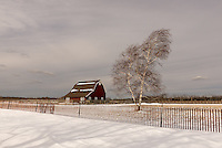 Winter Barn &amp; Birch<br />