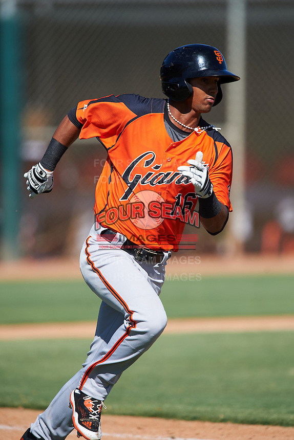 San Francisco Giants Jose Layer (16) during an Instructional League game against the Chicago White Sox on October 10, 2016 at the Camelback Ranch Complex in Glendale, Arizona.  (Mike Janes/Four Seam Images)