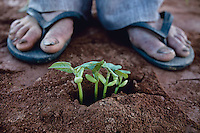 Bom Jesus da Lapa_BA, 26 de Abril de 2010 ..Os Chicos - 2a Viagem..Foto: LEO DRUMOND / NITRO