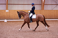 Helen Johansson and Strano (Hejbols De Strano, e De Noir - Golfstrom II, born 2007, breeder Per Torp, owner Helen Johansson) in dressage competition Msv C:1 at Skabersjoortens Ryttarforening. <br />