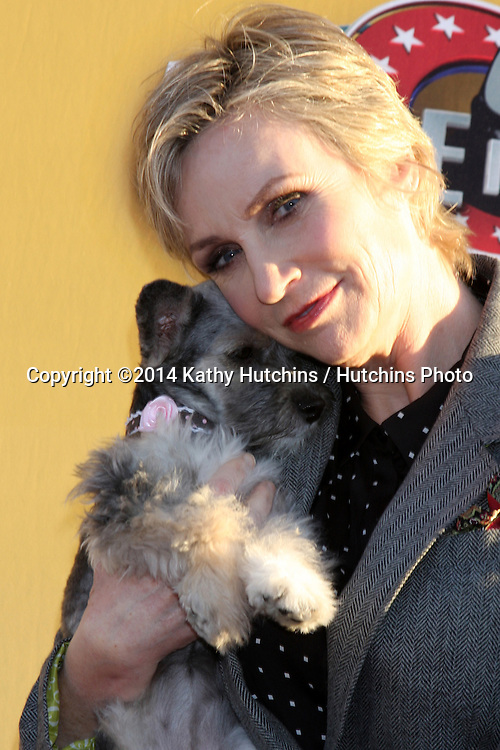 """LOS ANGELES - NOV 22:  Jane Lynch at the FOX's """"Cause for Paws:  All-Star Dog Spectacular"""" at the Barker Hanger on November 22, 2014 in Santa Monica, CA"""