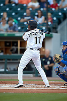 Tim Anderson (11) of the Chicago White Sox at bat during a rehab assignment with the Charlotte Knights against the Buffalo Bisons at BB&T BallPark on July 24, 2019 in Charlotte, North Carolina. The Bisons defeated the Knights 8-4. (Brian Westerholt/Four Seam Images)
