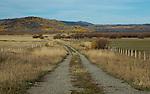 Idaho, Southeastern, Soda Springs. Dirt road into the Grays Lake Wildlife Refuge in autumn.