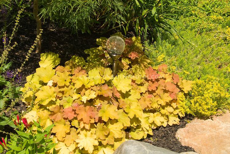 Heuchera with garden globe ornament, gazing ball