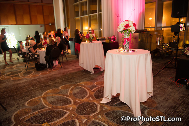 Girls Night Out Gala at America's Center in St. Louis, MO on March 15, 2014.