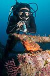 DM Warren Sioco @Marco Vincent with Scorpion fish, Marco Vincent, Philippines, Puerta Galera, Verde Islands, Wreck of the Alma Jane