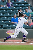 Alex Call (6) of the Winston-Salem Dash follows through on his swing against the Buies Creek Astros at BB&T Ballpark on April 13, 2017 in Winston-Salem, North Carolina.  The Dash defeated the Astros 7-1.  (Brian Westerholt/Four Seam Images)