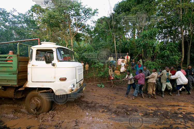 Agricultural workers try to pull a truck, which is carrying their coffee crop to the capital, out of the mud. The poor infrastructure in the Ethiopian countryside often makes it difficult for farmers in rural areas to transport their products to the larger markets.